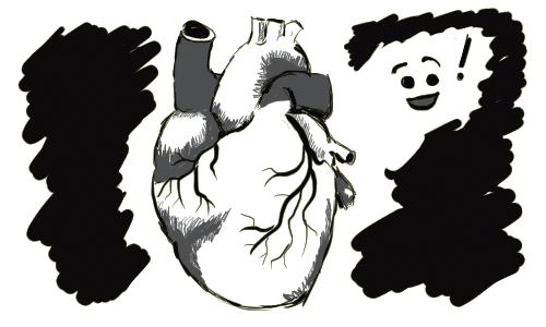 A regular human heart.